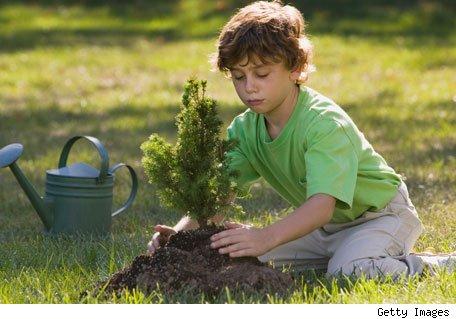 nino-plantando-un-arbol