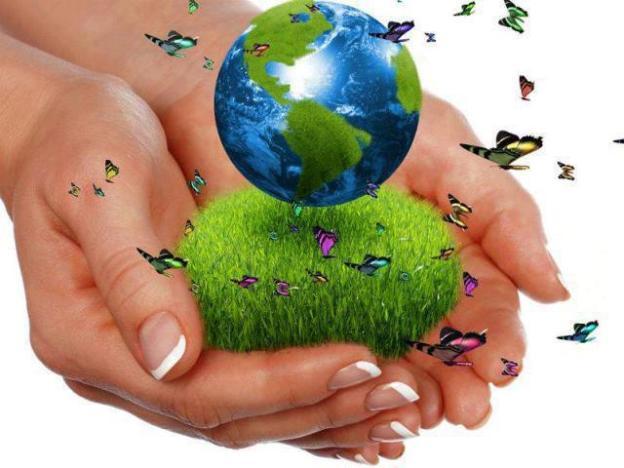 jardineria ecologica 2
